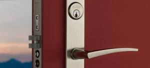 Main Door Handles